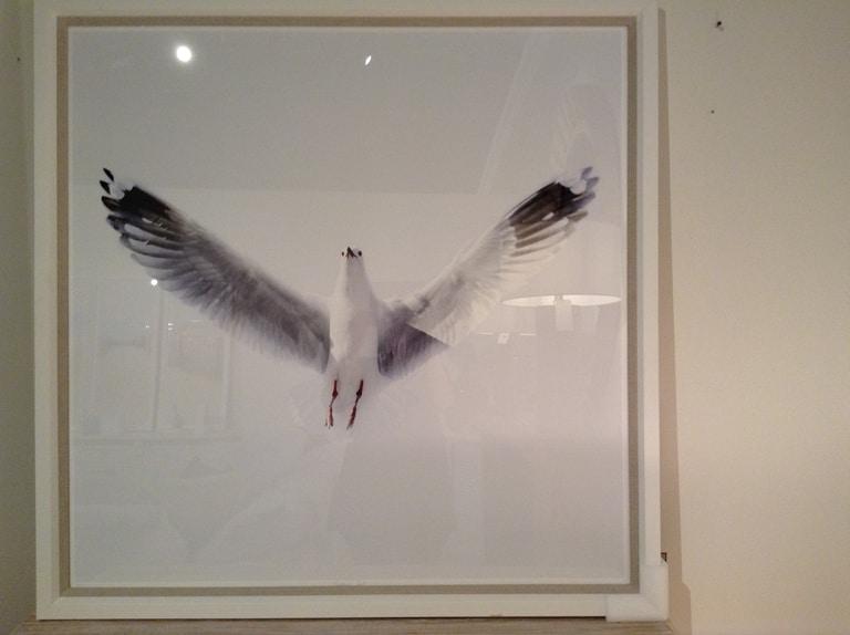 The Sea Gull Acp Home Interiors